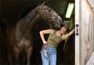Horse As Healer 1*: The Intuitive Body!: